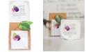 The Cottage Greenhouse Violette Fig & Black Currant Fine Salt Scrub, 12-oz.