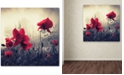 """Trademark Global Philippe Sainte-Laudy 'Red For Love' 24"""" x 24"""" Canvas Wall Art"""