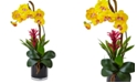 Nearly Natural Orchid & Bromeliad Artificial Arrangement in Glossy Black Cylinder Vase