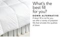 Lauren Ralph Lauren Lightweight Down Alternative Full/Queen Comforter, Lite Loft Polyester Fill, 100% Cotton Cover