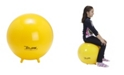 Gymnic Sit'N'Gym Jr. 45 Therapy Seating Exercise Ball with Stability Legs