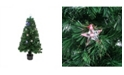 Northlight 4' Pre-Lit LED Artificial Christmas Tree With Color Changing Stars and stand