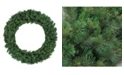 Northlight Mixed Canyon Pine Artificial Christmas Wreath - 60-Inch Unlit