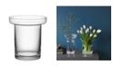 Kosta Boda Limelight Tulip Vase