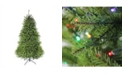 Northlight 9' Pre-Lit Northern Pine Full Artificial Christmas Tree - Multi-Color LED Lights
