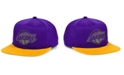 Mitchell & Ness Los Angeles Lakers 2 Team Reflective Snapback Cap