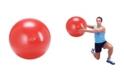 Gymnic Exercise Ball Plus 55