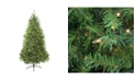 Northlight 9' Pre-Lit Northern Pine Full Artificial Christmas Tree - Clear Lights