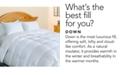 Blue Ridge 500-Thread Count Damask Stripe Down Comforter