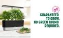 AeroGarden Goodful™ by Harvest Slim Countertop Garden & Gourmet Herbs Seed Kit