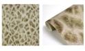 "Brewster Home Fashions Brewster 21"" x 396"" Montone Giraffe Wallpaper"