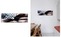 "iCanvas Bald American Eagleus Flag C by iCanvas Wrapped Canvas Print - 16"" x 48"""