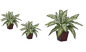 Nearly Natural Silver Queen Silk Plant, Set of 2