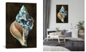 "iCanvas Ocean Treasure Iii by Caroline Kelly Wrapped Canvas Print - 60"" x 40"""
