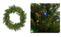 """Northlight 24"""" Pre-Lit Northern Pine Artificial Christmas Wreath - Multi-Color LED Lights"""