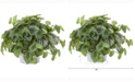 Nearly Natural 13in. Watermelon Peperomia Artificial Plant in Embossed White Planter Real Touch