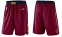 Nike Men's Cleveland Cavaliers Icon Swingman Shorts