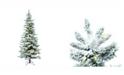 Vickerman 7.5' Flocked Utica Fir Slim Artificial Christmas Tree with 400 Warm White LED Lights