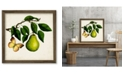 "Courtside Market Fruit with Butterflies I 18"" x 18"" Framed Canvas Wall Art"