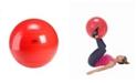 Gymnic Classic Exercise Ball 55