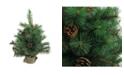 Northlight 2' Royal Oregon Pine Artificial Christmas Tree in Burlap Base - Unlit