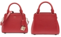 DKNY Paige Small Leather Satchel, Created for Macy's