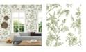 """Brewster Home Fashions Jessamine Floral Trail Wallpaper - 396"""" x 20.5"""" x 0.025"""""""