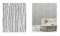 """Advantage 20.5"""" x 369"""" Flay Birch Tree Wallpaper"""