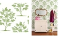 """Brewster Home Fashions Woodland Trees and Birds Wallpaper - 396"""" x 20.5"""" x 0.025"""""""
