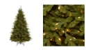 National Tree Company 7.5 ft. Neshanic Valley Spruce Tree with Dual Color® LED Lights