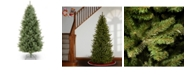 National Tree Company National Tree 9' Natural Fraser Slim Fir Tree