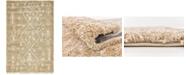 Bridgeport Home Fazil Shag Faz1 Taupe 5' x 8' Area Rug