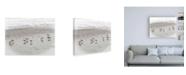 "Trademark Global Brooke T. Ryan Sandpipers Canvas Art - 36.5"" x 48"""