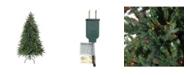 Northlight 6.5' Pre-Lit Hunter Fir Full Artificial Christmas Tree - Multi-Color Lights