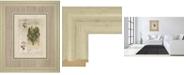 "Classy Art Histoire Du Orchid VII by Carney Framed Print Wall Art, 34"" x 40"""