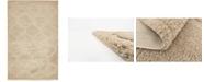 Bridgeport Home Filigree Shag Fil2 Beige 5' x 8' Area Rug