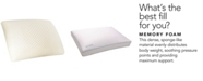 Carpenter Co. Isocool Memory Foam Standard Pillow Collection
