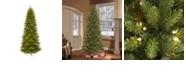 Puleo International 9 ft. Pre-lit Slim Franklin Fir Artificial Christmas Tree 800 UL listed Clear Lights