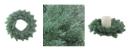 """Northlight 16"""" Decoratively Frosted Green Pine Artificial Christmas Wreath- Unlit"""