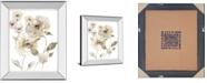 """Classy Art Translucent Garden II by Nan Mirror Framed Print Wall Art, 22"""" x 26"""""""