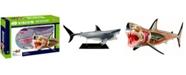 4D Master 4D Vision Great White Shark Anatomy Model