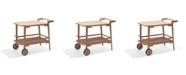 Alaterre Furniture Otero Eucalyptus Wood Outdoor Bar Trolley Cart