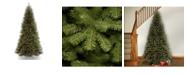 National Tree Company National Tree 9' North Valley Spruce Hinged Tree