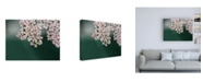 "Trademark Global Brooke T. Ryan Blush Pink Flowers Canvas Art - 36.5"" x 48"""