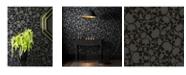 Graham & Brown Graham Brown Skulls Black Wallpaper
