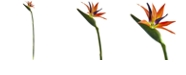 Nearly Natural 35-In. Bird of Paradise Artificial Flower, Set of 4