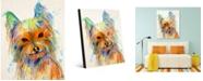 "Creative Gallery Colorful Bella Yorkie Dog 24"" X 36"" Acrylic Wall Art Print"