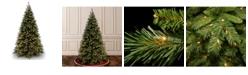 National Tree Company National Tree Tiffany Medium Fir Tree With 850 Clear Lights