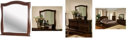 Furniture of America Adhammer Transitional Mirror