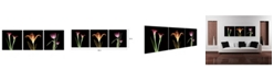 """Chic Home Decor Tropical 3 Piece Wrapped Canvas Wall Art X-Ray Design -16"""" x 48"""""""